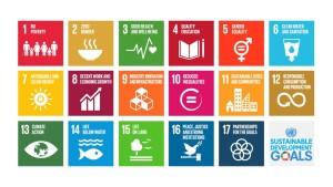 sustainable-development-goals-infographic-un-1024x576