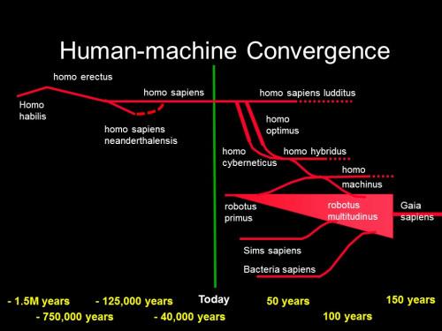 human-evolution-2