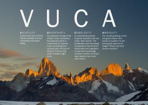 vuca-copy